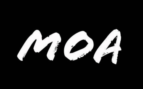 Black Friday MOA