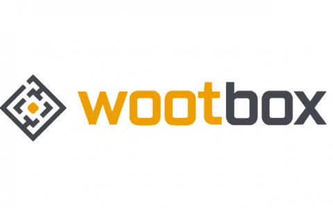 Black Friday Wootbox